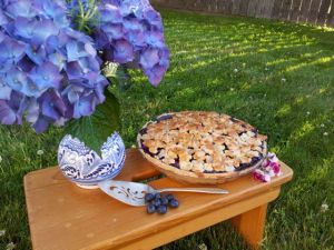 The Best Blueberry Pie, the Tamara Blog