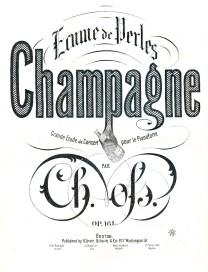 champagnegfairy004