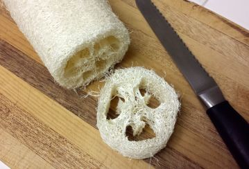 Loofa Slices -- The Tamara Blog